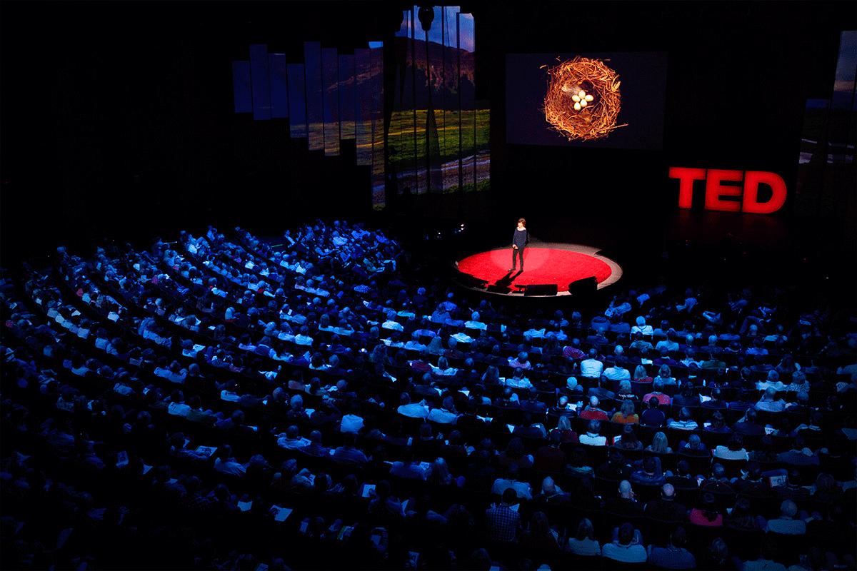 13 Técnicas para Desbloquear a Criatividade - Palestra TED - Coisa de Fotógrafa